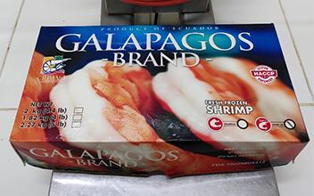 進口CRIMASA南美白蝦(厄瓜多爾白蝦)